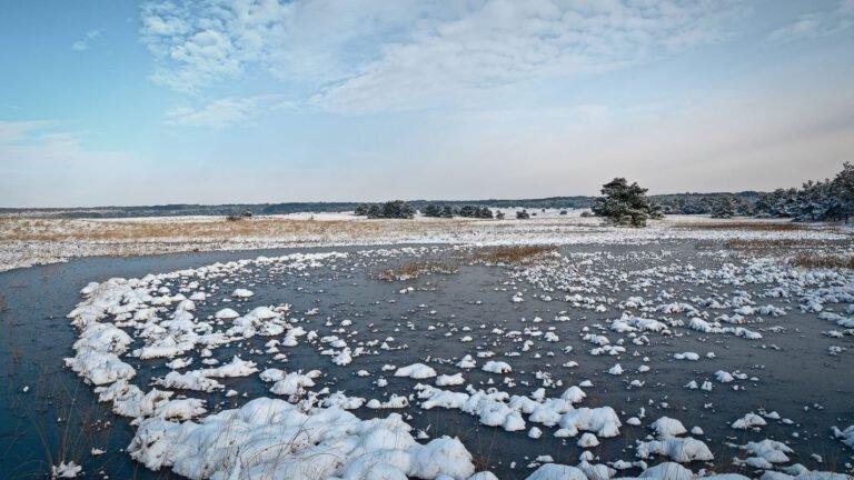 Sneeuw en ijs op de Asselse hei