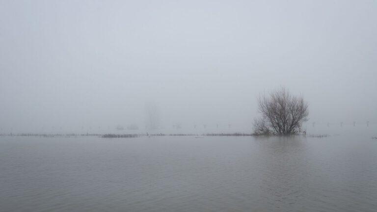 Hoog water langs de IJssel bij Zutphen