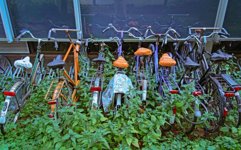 Verwaarloosde fietsen van studenten