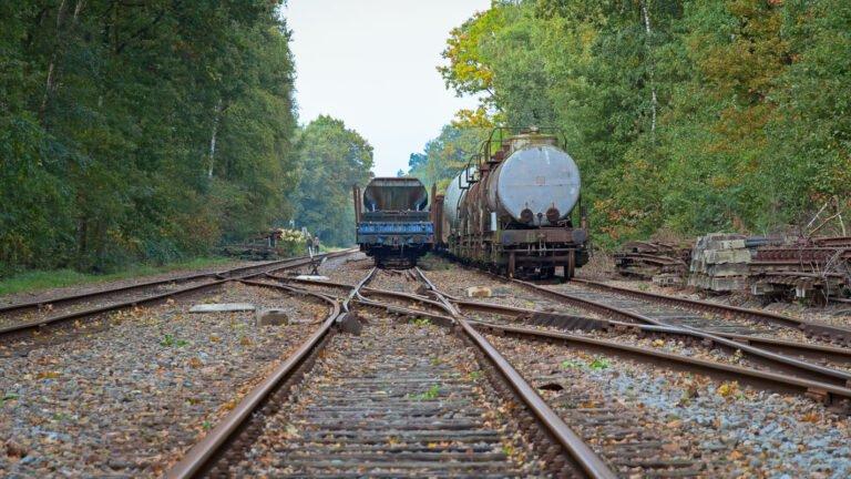Twee wagonnen op het station van Loenen