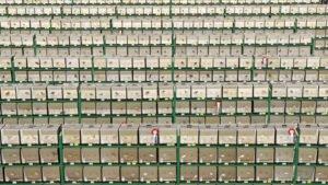 Heel vele vogeltjes : rijen van kooien met vogeltjes op de vogeltentoonstelling in Apeldoorn