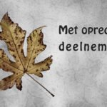 Condoleance kaart met tekst met oprechte deelneming en een herfstblad van de amberboom