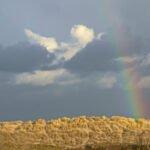 Een regenboog boven de duinen.