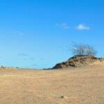 Zand als in een woestijn op het Kootwijkerzand.