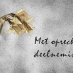 Condoleance kaart met tekst met oprechte deelneming en een gele hyacint