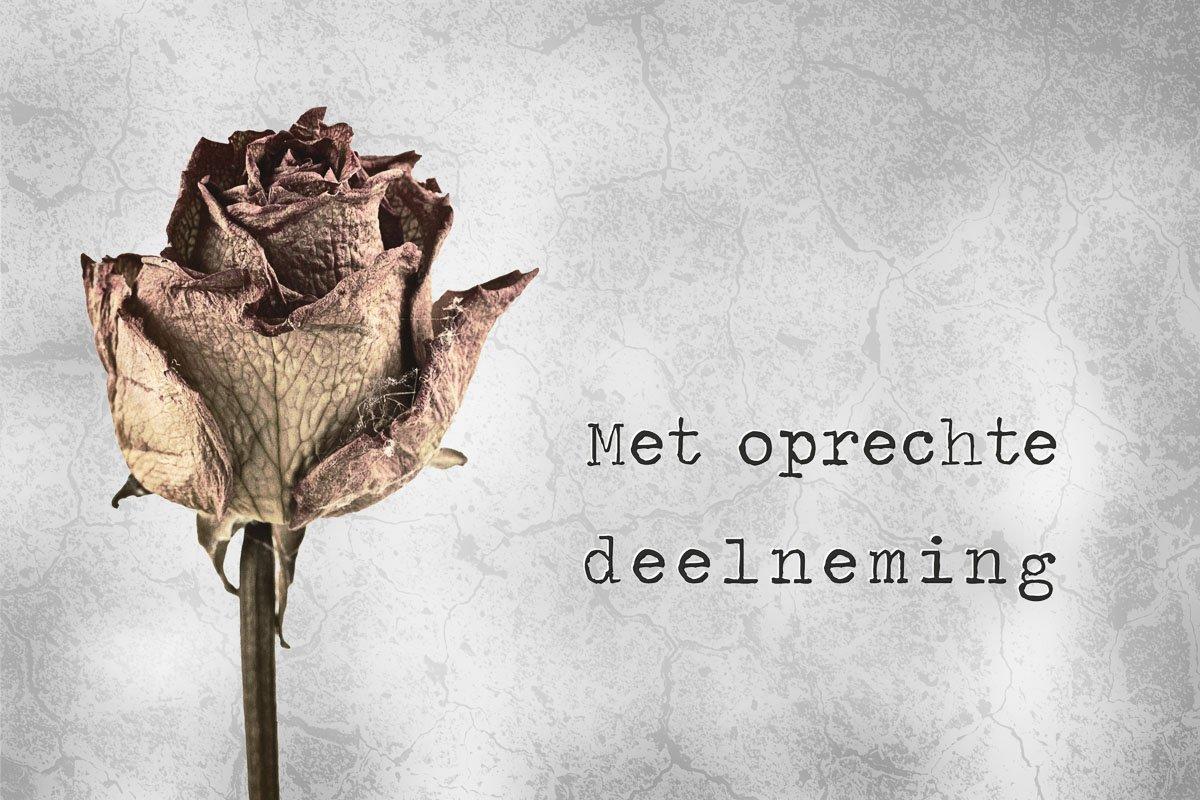 Condoleance kaart met tekst met oprechte deelneming en een gedroogde roos