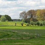 De dijk langs de Nederrijn bij Randwijk