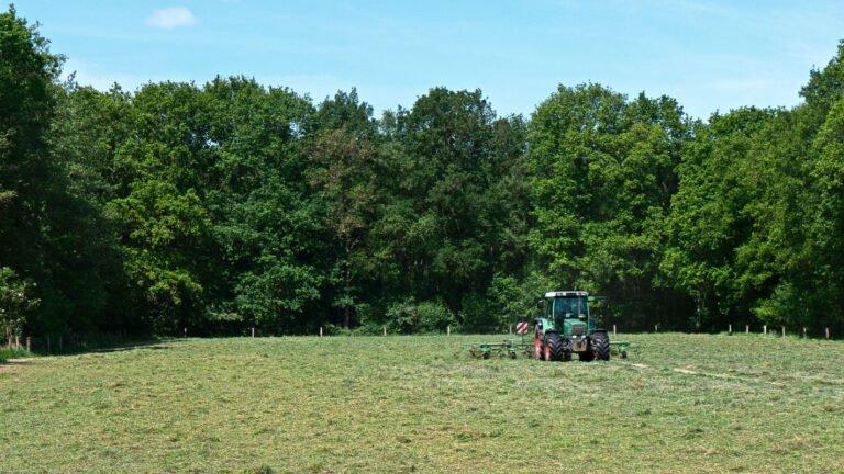 Hooimaand - het schudden van het gemaaide gras op landgoed Klein