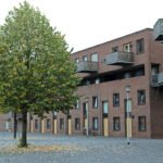 Een vroege herfst in Osseveld - de lindenboom verliest al blad begin september