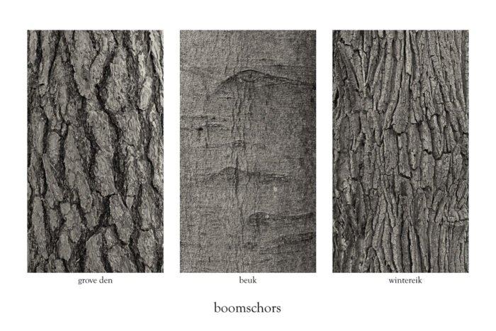 Boomschors van grove den, beuk en zomereik