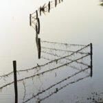 Hek van prikkeldraad in de overstroomde uiterwaard van de IJssel